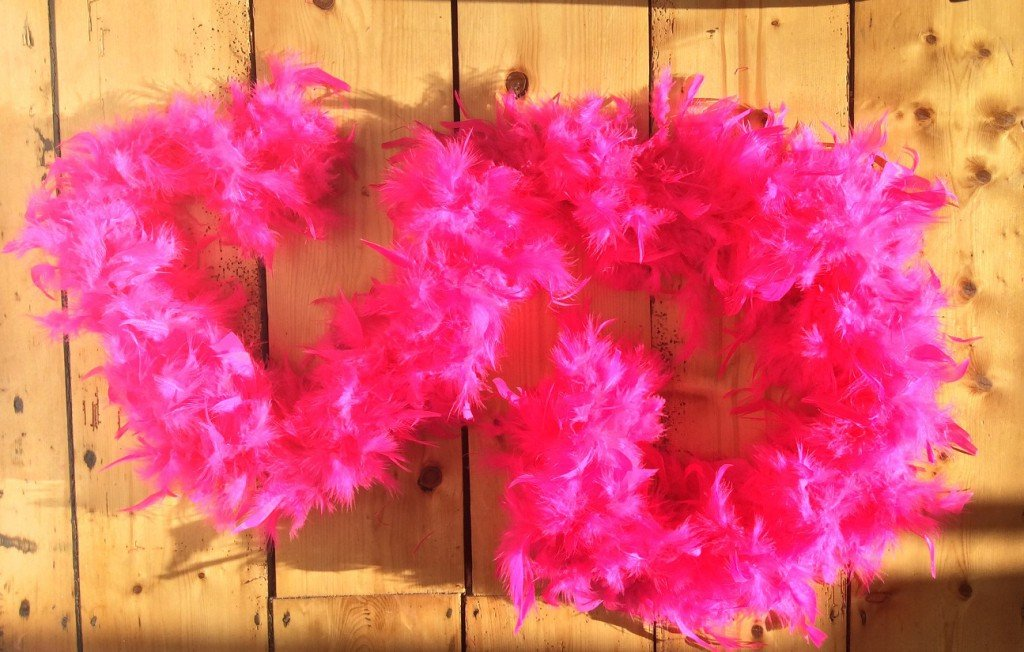 Boa Pink Feather - thefancyhen.ie