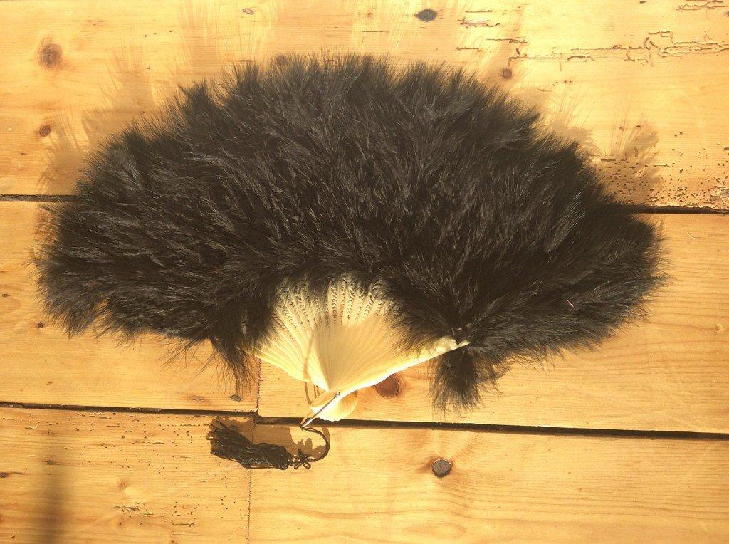 Fan Black Feather - thefancyhen.ie
