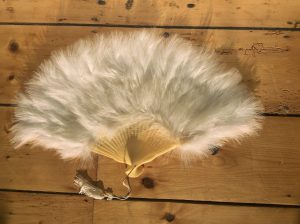 Fan White Feather - thefancyhen.ie